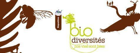 biodiversite-arpe